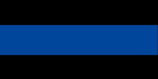 logo_Rhenus