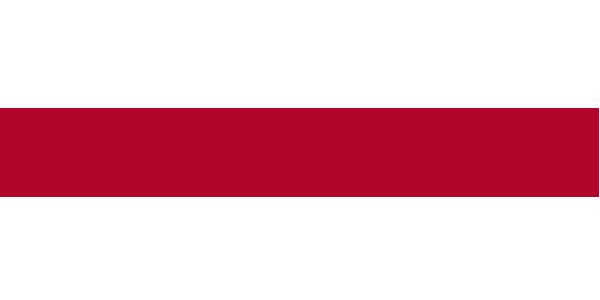 logo_FMS
